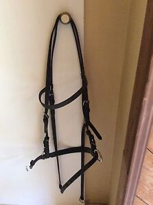 Various Bridles, Reins and Bits