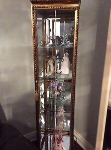 Glass case with glass shelves