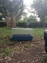 Rabbit Guinea Pig hutch cage Wallacia Liverpool Area Preview