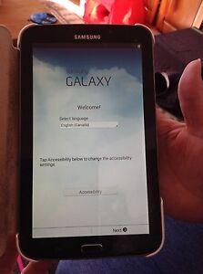 Samsung Galaxy Tab S 3       7 inch screen