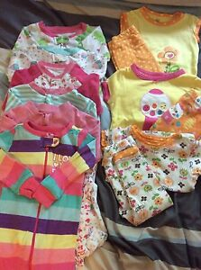 Baby Girl Clothing Lot - 6-12 months