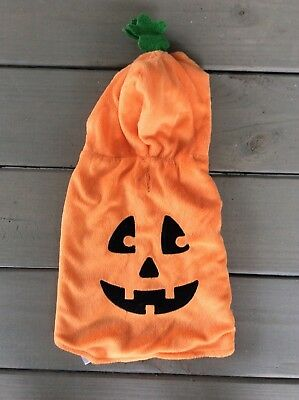 Halloween Pet Costume Toys R Us Small Dog or Cat Jack O Lantern