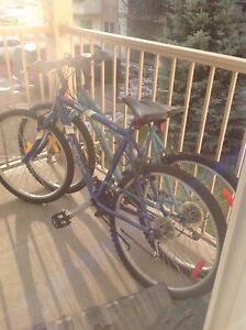 2 cycles for sale
