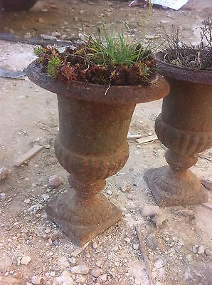 Pair of vintage/antique cast iron garden urns