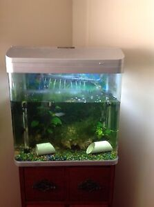 Aqua one Aqua style 510 ( 75L)  curved glass aquarium !!!! Chipping Norton Liverpool Area Preview