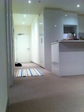 One bed room for rent in spacious southbank apartment Southbank Melbourne City Preview