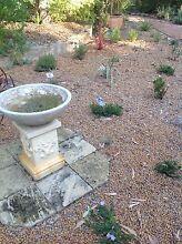 WANTED free pea gravel Wandi Kwinana Area Preview