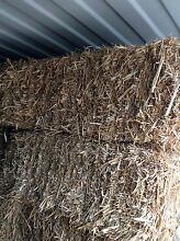 Square straw bales only a few left $12 Tarleton Latrobe Area Preview
