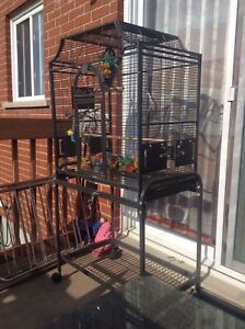 Parrots cage , big cage for couple parrots