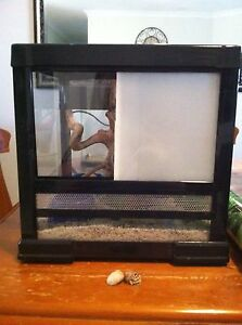 Crazy crab tank Seville Grove Armadale Area Preview