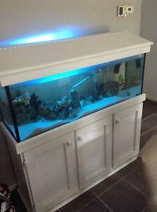 190 litre fish tank Berwick Casey Area Preview