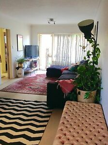 Cosy Bronte Beach Apartment Bronte Eastern Suburbs Preview