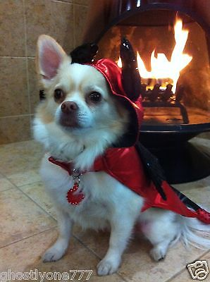 red black devil  costume dog pet clothes Halloween outfit cute doggy small (Devil Dog Pet Costume)