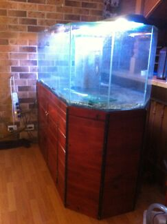 5ft custom fish tank SOLD PENDING PICKUP  Medowie Port Stephens Area Preview