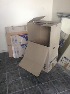 Moving Boxes - 7 Medium; 18 Large; 1 Hanging Haberfield Ashfield Area Preview