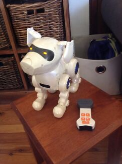 Robot Dog for FREE? Castle Hill The Hills District Preview