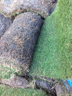 10 rolls of wintergreen roll on lawn Noranda Bayswater Area Preview