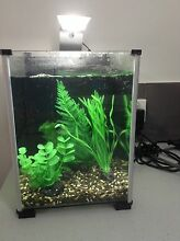 Counter Top Fish Tank with all Bits & Bobs! Joondalup Joondalup Area Preview