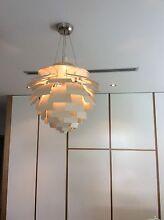 Designer Artichoke pendant light Somerton Park Holdfast Bay Preview