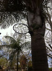 Basketball hoop Jandakot Cockburn Area Preview