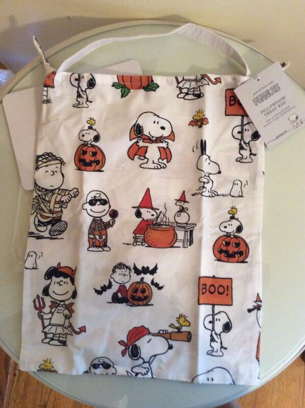 Pottery barn kid Snoopy peanuts Pillowcase Treat bag toddler woodstock lucy gift