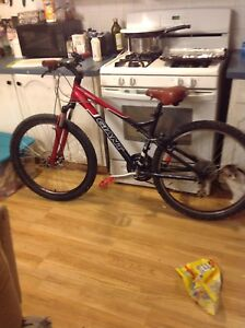 Giant mountain bike quick sale