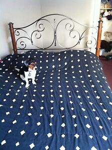 Queen bed frame (not the dog)