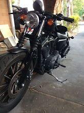 Harley Davidson 883 iron sportster Balga Stirling Area Preview