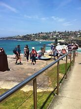 TAMA BONDI 2 BR WATER VIEWS PEACEFUL BRIGHT CLS BEACHES Bondi Eastern Suburbs Preview