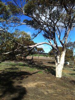 Rural property, bush block, land, acreage, farm, bush retreat  Palmyra Melville Area Preview