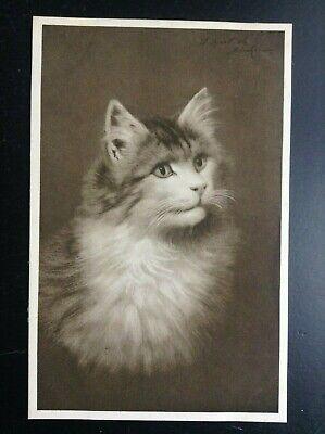 Carte postale fantaisie chat 1331