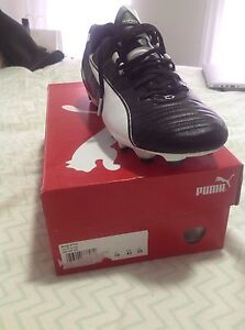 Puma king size 10 football boots Clovelly Park Marion Area Preview