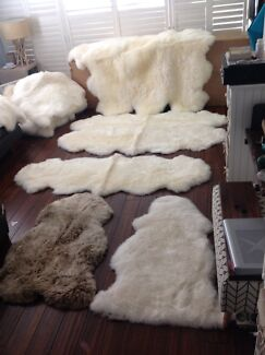 Pure organic Lamb skin rugs from $108 Maroubra Eastern Suburbs Preview