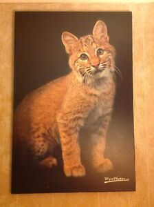 Hope for Wildlife Society's Bobcat, Clifford