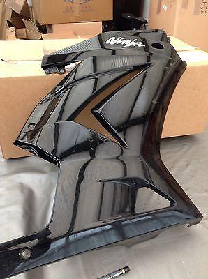 Kawasaki Ex300 Right Fairing Panel