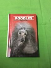 Poodles by Kerry Donnelly.           R036 Kingston Logan Area Preview
