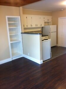 Nicely renovated 1 bedroom bills included!