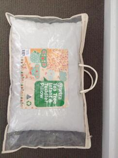 TETRA TEA TREE INFANT & TODDLER PILLOW Stafford Heights Brisbane North West Preview
