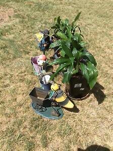 Indoor plants plus ornaments. Invergowrie Uralla Area Preview