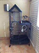 LARGE BIRD CAGE - Excellent condition Cleveland Redland Area Preview