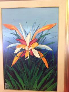 David hart - Orchid Wanneroo Wanneroo Area Preview