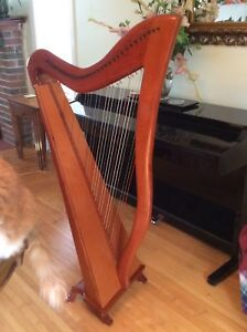 AWESOME CELTIC HARP
