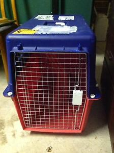 Airline approved pet carrier for hire Amaroo Gungahlin Area Preview