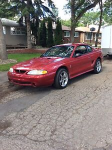 1998 Ford Mustang svt cobra Coupe (2 door)