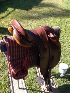 Davidson and sons stock saddle. plus Status synthetic saddle