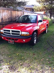2004 dodge Dakota low km!