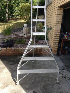 Aluminium fruit picking ladder