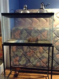 Fish Tank with lid and stand
