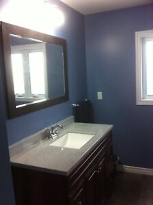 5 MIN WALK TO MOHAWK COLLEGE STUDENT ROOMS $500