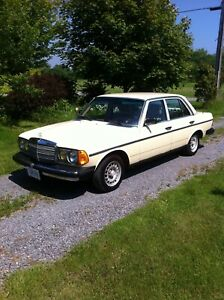 Mercedes Benz Diesel Great Selection Of Classic Retro Drag And